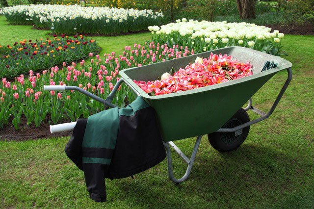 best-wheelbarrows-reviews