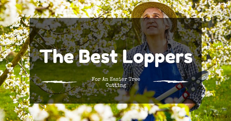 best-loppers