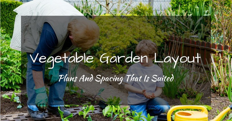 vegetable-garden-layout-plans-and-spacing