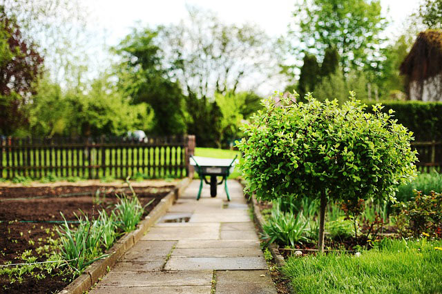 best-wheelbarrows-gardening