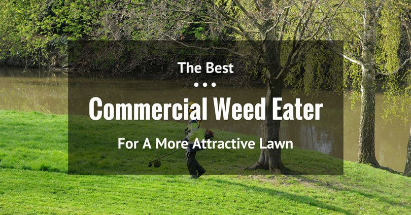 best-commercial-weed-eater