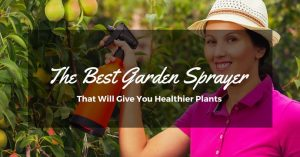 The Best Garden Sprayers For Horticulture and House Projects