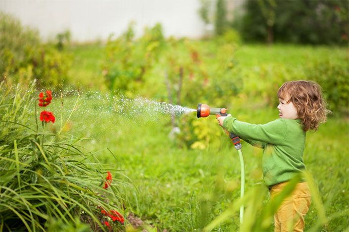 best sprinklers for small lawns