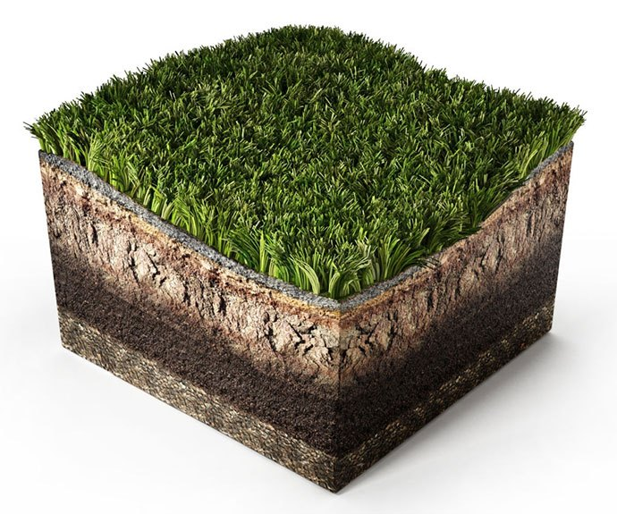 growing grass in red clay soil