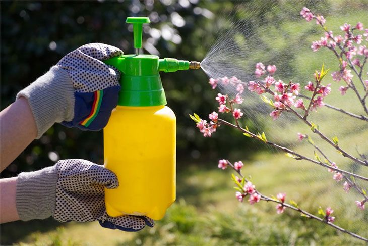 best garden sprayer for vinegar