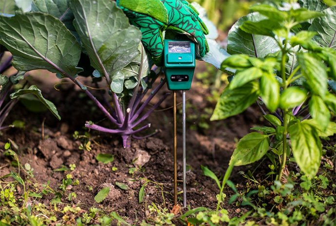 best soil ph tester for food plots