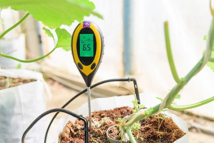 best soil ph tester for lawns