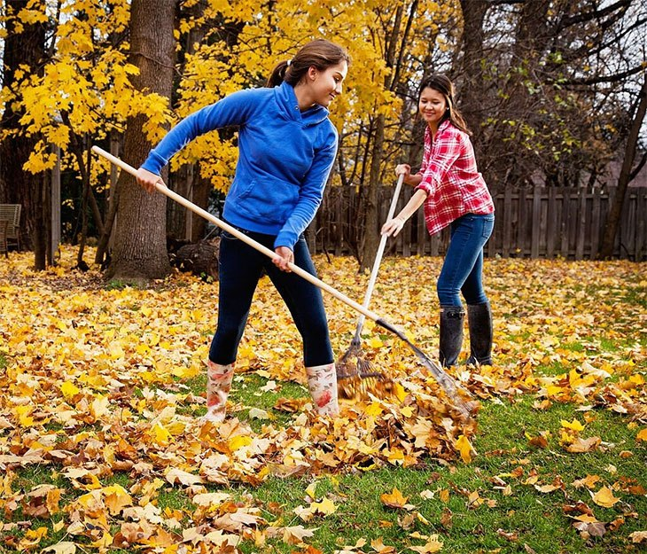 best leaf rake for grass