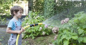 How to Get That Remarkable Garden Using the Best Garden Hose